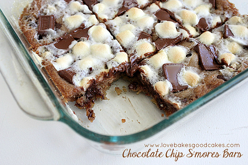 Chocolate Chip S'mores Bar