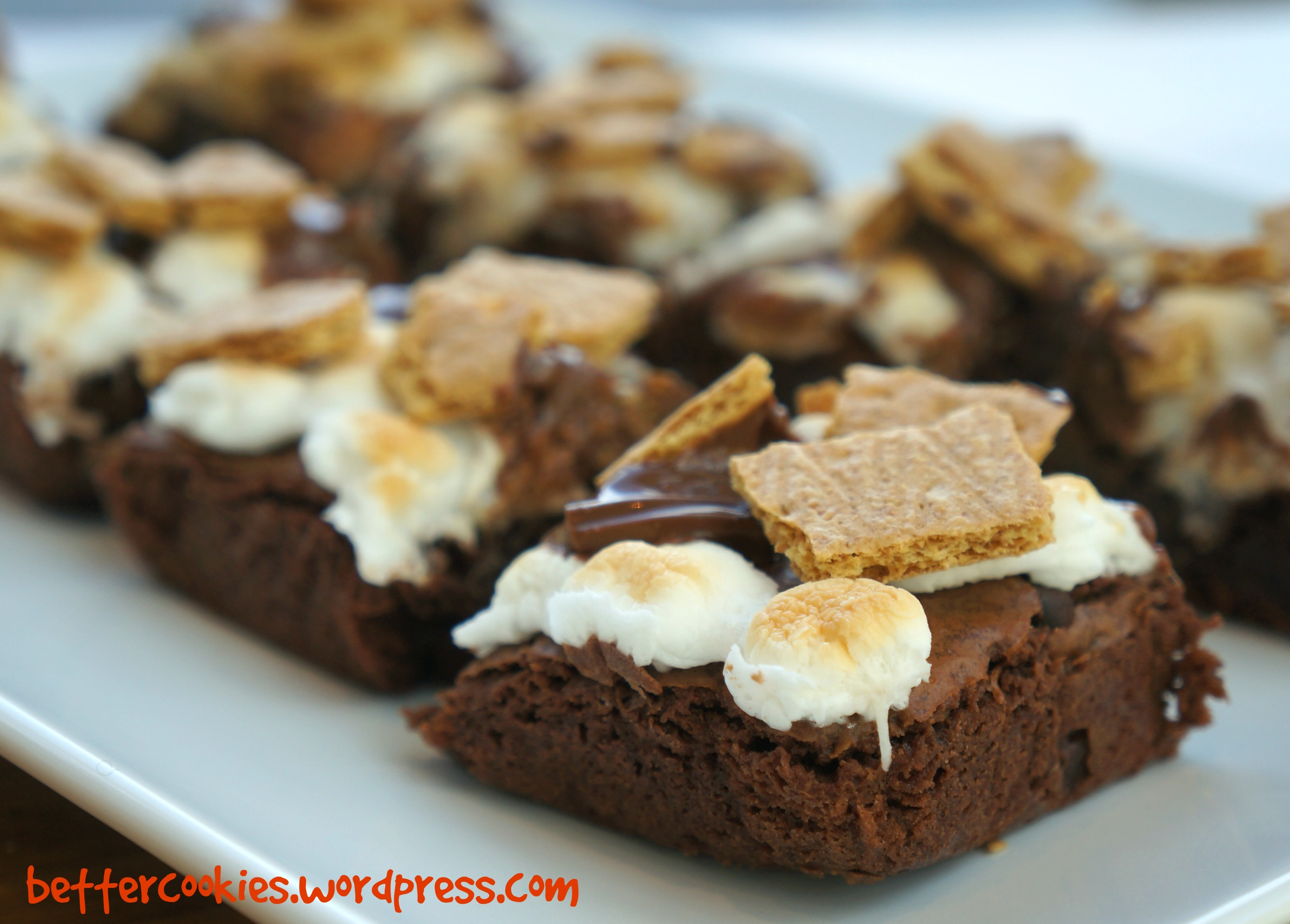 S'mores Fudgy Brownies – Goodies & Yum x Immaculate Baking